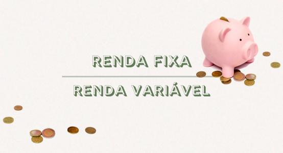 Renda Fixa e Renda Variável: modalidades diferentes para compor sua carteira de investimentos